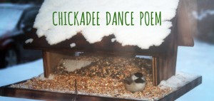 Chickadee Dance Poem by The Forest Fairy