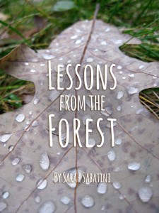 Lessons from the Forest