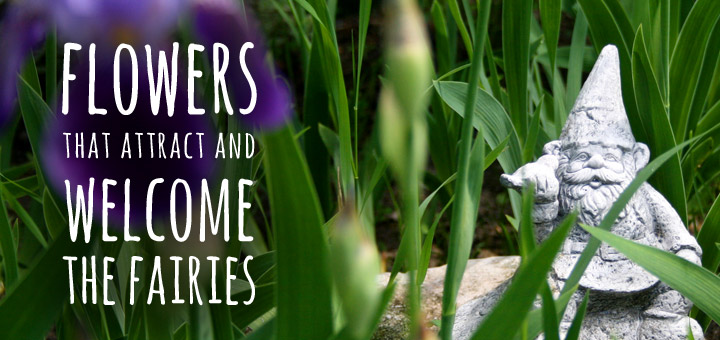 Fairy Garden: Flowers That Attract and Welcome the Fairies into Your Garden