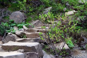 Iceland Trail Path