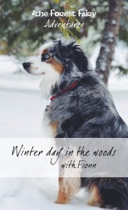 Winter Day in the Woods with Fionn