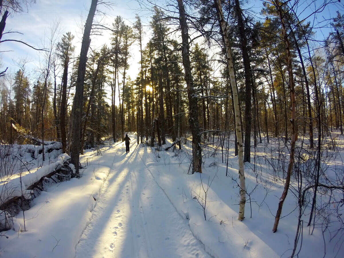 Sandilands: Cross Country Ski Adventure Through The Frozen Forest