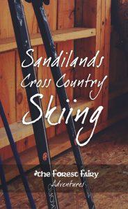 Cross Country Skiing Adventure in the Sandilands