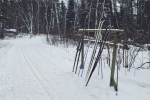 Sandilands Provincial Forest Ski Trail